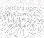 fern5