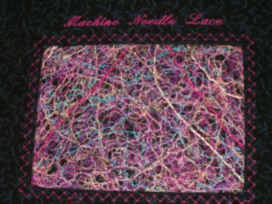 Needle Lace Sample 2